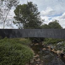 Bold black bridge explores the limits of lightweightness