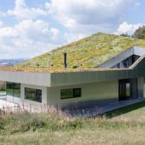 Caramel Architekten's green roof restores Hagenberg's landscape vegetation