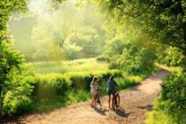 How getting back to nature will improve your productivity