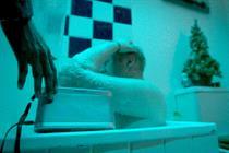 Asos attacks Christmas clichés in menswear ad