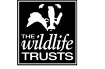 Wildlife Trusts to hire eight-person marketing team