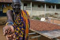 Fairtrade becomes mainstream with Cadbury initiative