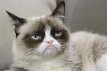 Campaign Viral Chart: Grumpy Cat makes his debut