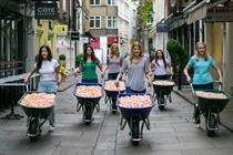 In pictures: Boots preps one million flower petals for hay fever stunt