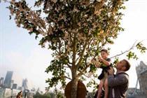 Cake creates 'money tree' for SunLife