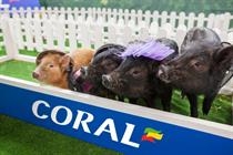Exclusive: Event TV - Coral's racing micropigs