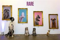Facebook opens art gallery for dogs