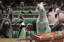 Read all about it: how The Times and Sunday Times got animals into Parliament
