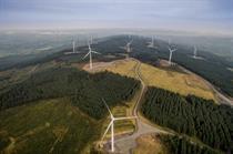Forestry firm seeks 1GW pipeline in Ireland