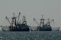 US projects concede spacing to fisheries demands -- updated