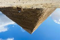 It's time to invert the organisational pyramid