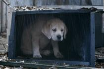 Campaign Viral Chart: Budweiser Super Bowl 'lost puppy' ad tops list