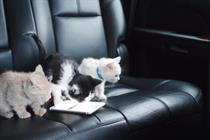 Uber lets users hail a kitten on National Cat Day