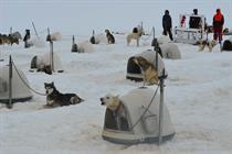 Incentive inspiration: 5 days in Alaska