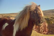 "Three ""the pony"" by Wieden & Kennedy"
