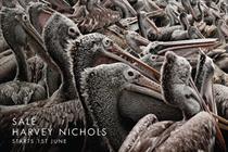 Harvey Nichols 'pelicans' by Y&R Dubai