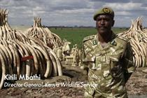 """WildAid """"#JoinTheHerd"""" by Grey London"""