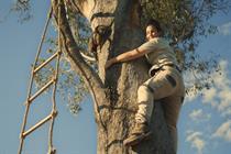 "Cushelle ""Koala academy"" by Publicis.Poke"