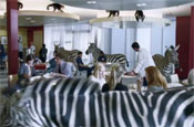 E.ON 'animals' by TBWA\London