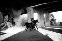 "Guinness ""The Compton cowboys"" by AMV BBDO"
