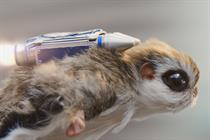 """McVitie's """"flying squirrel"""" by Grey London"""