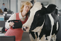 Tech savvy cows create virtual reality escapades for Chick-fil-A