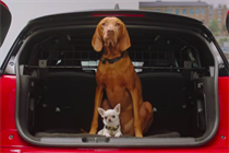 """Mini UK and Dogs Trust """"Dogs love Mini"""" by The Brooklyn Brothers"""