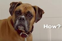 You can play fetch across the internet with BBDO New York's new Pedigree game