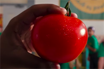 """Morrisons """"It's good to grow"""" by Publicis.Poke"""