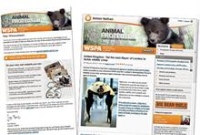Third Sector Excellence Awards 2012: Direct Marketing Campaign - Winner: WSPA UK: Animal Protector
