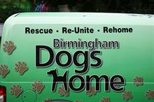 Paddy Power ordered to repay £500,000 to Birmingham Dogs Home