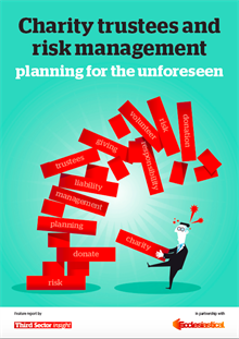 Planning for the Unforeseen: expert report