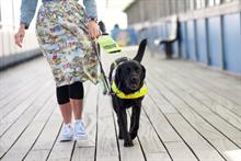 Guide Dogs posts record income