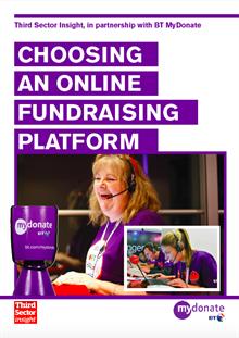 Choosing an Online Fundraising Platform: expert report