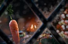 Aldi digs deep with 'Kevin the carrot' Christmas campaign