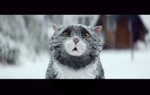 Sainsbury's 'Mog the Cat' tops most 'positive' Christmas campaign