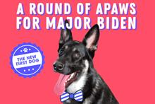 Major Biden's 'indoguration' raises $202k for Delaware Humane Association