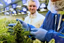 How PR helped Tilray break new ground with first US cannabis IPO