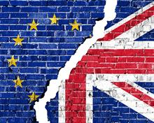 Preparing for a post-Brexit world