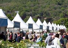 RHS Malvern garden show adds extra day and removes marquee for 2021