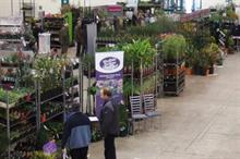 Plant sales season starts well ahead of early Mothering Sunday and Easter