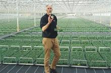 Bedding plant research and development from AHDB, BPOA and ADAS restarts three-year programme at Boxworth