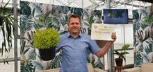 Salvia Feathers Peacock wins KVBC new plant award