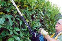 Makita EH7500W petrol hedge trimmer