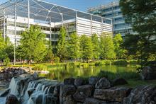 Top 70 Landscape and Maintenance Contractors - Top trends from the 2019 Report