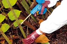 Amenity weed control - coping with chemical restrictions