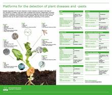Roadmap for the detection of plant pests and diseases published