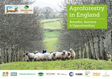 Trees on farms 'essential to improve productivity and environmental protection post-Brexit'