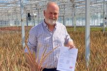 Wyevale Nurseries highlights importance of  plant health and biosecurity to customers