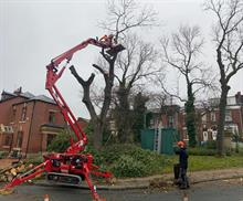 Oldham Council urges inspection of ash as ash dieback felling accelerates